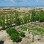 REPORTAJE ESPECIAL: Huertos urbanos para sembrar de humanidad las ciudades