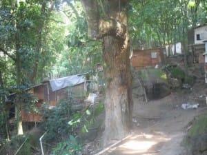 """Con planchas de madera, plástico y otros materiales precarios, como estas viviendas levantadas en una empinada ladera en la """"favela"""" de La Rocinha, en Río de Janeiro, comienzan las ocupaciones por el derecho a la vivienda en los grandes asentamientos irregulares de las ciudades de América Latina. Crédito: Fabiana Frayssinet/IPS"""