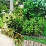 """¿Por qué Ciudad de Guatemala es la """"Capital Verde Iberoamericana"""" en 2019?"""