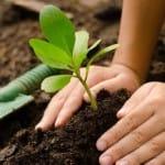 Madrid se adhiere a la Red de Ciudades por la Agroecología