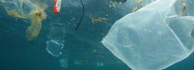 369a2-beneficios-de-prohibir-las-bolsas-de-plastico