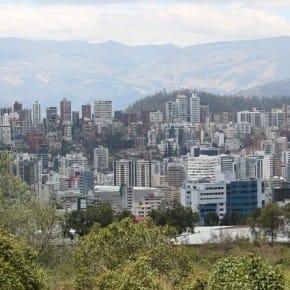 Arbolado urbano Quito
